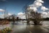 Historic hurricane season squeezes insurers