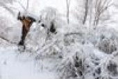 Cold temperatures, winter weather wreak havoc for insurance